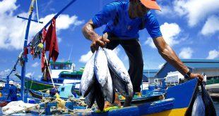 A Maldivian fisherman. Photograph courtesy of Ali Nishan/Flickr.