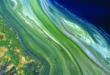 Australian SmartSat and CSIRO to launch space-based water monitoring AquaWatch